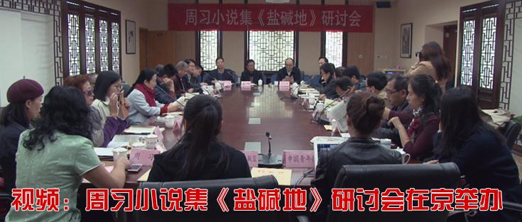视频:周习小说集《盐碱地》研讨